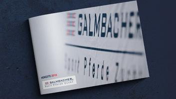 Hengstprospekt Galmbacher SPZ 2016 - 56-seitige Broschüre, z.art, zart, design, werbung, Neunkirchen, Umpfenbach, Wertheim, Miltenberg